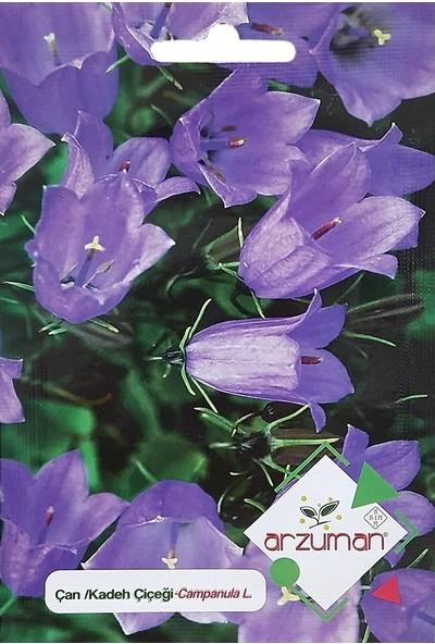 Mutbirlik Çan Kadeh Çiçeği Tohumu-100 Adet