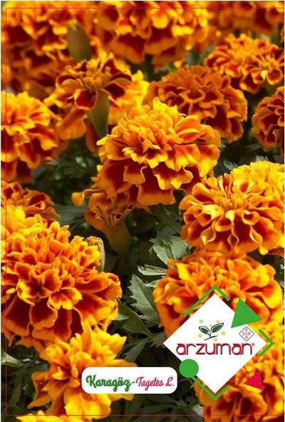 Mutbirlik Kokulu Karagöz Çiçeği Tohumu-50 Adet