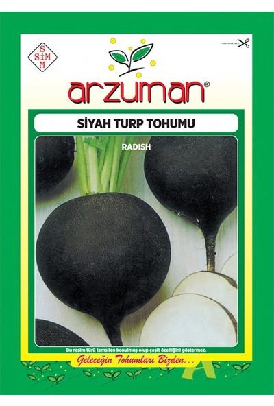 Mutbirlik Siyah İnci Siyah Turp Tohumu-25 Gram
