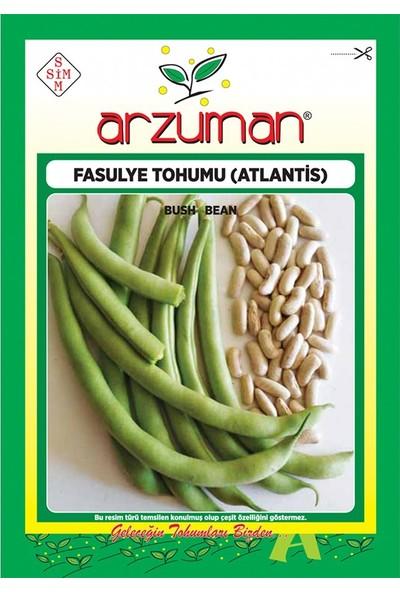 Mutbirlik Kılçıksız Kırk Günlük Fasulye Tohumu-50 Gram
