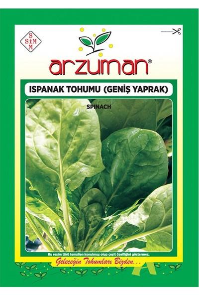 Mutbirlik Geniş Yapraklı Ispanak Tohumu-10 Gram