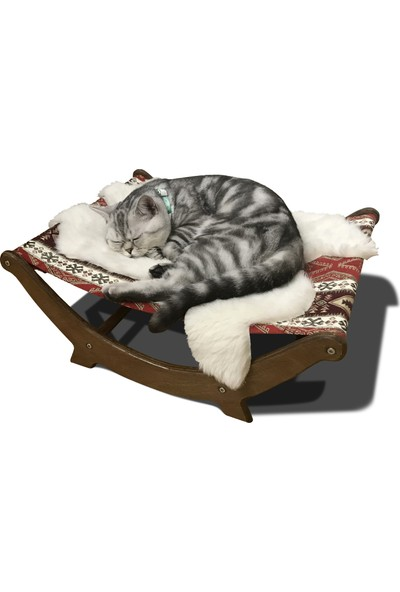 Hange Kedi Hamağı