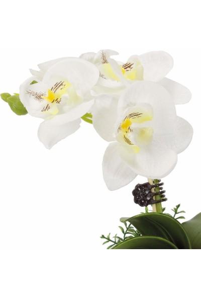 Noble Life Dekoratif Saksıda Beyaz Orkide Çiçek 22 cm