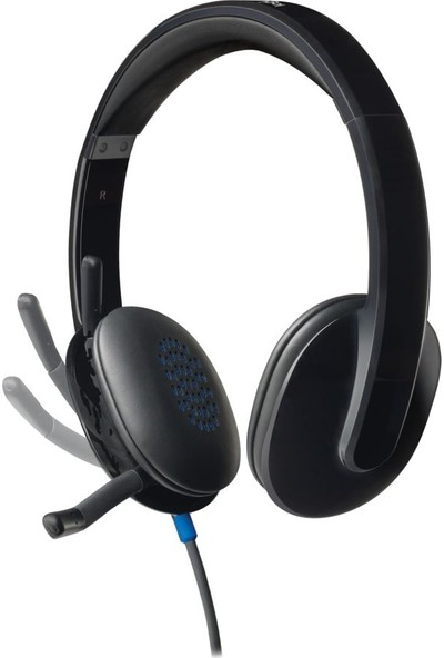 Logitech H540 USB Kulaklık-Siyah