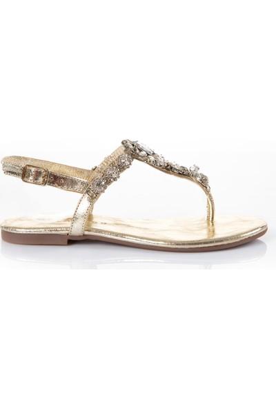 Oblavion Kadın Lavin Hakiki Deri Gold Taşlı Sandalet