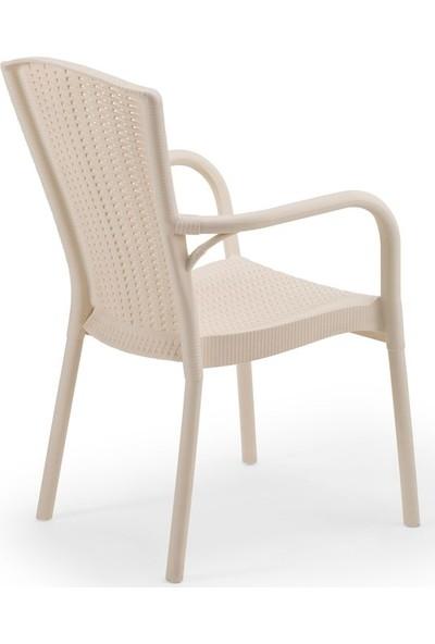Bintaş Mobilya Krem Rattan Plastik Dış Mekan Bahçe Masa Sandalye Takımı