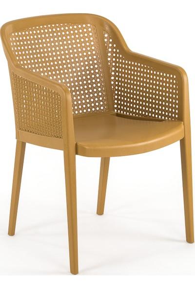 Bintaş Mobilya Ahşap Rengi Rattan Plastik Bahçe Masa Sandalye Modelleri