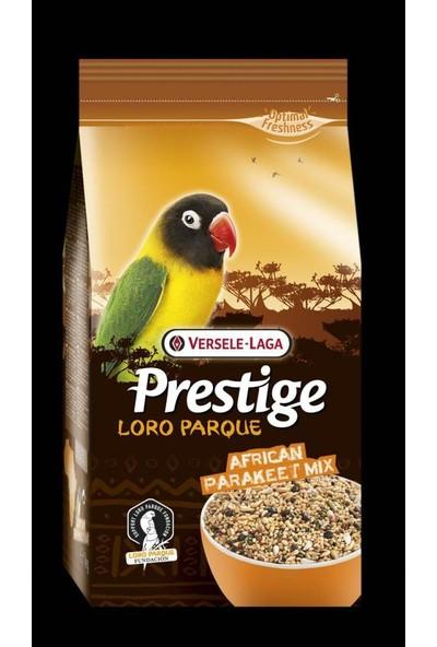 Versela Laga Loro Parque Afrika Paraket Yemi 1 kg