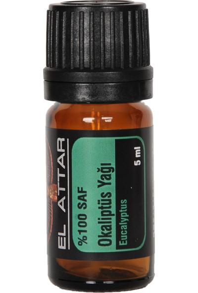 Spaın %100 Saf ve %100 Doğal Okaliptus Yağı (Parfüm Yapımı Için De Uygun Esansiyel ve Uçucu)
