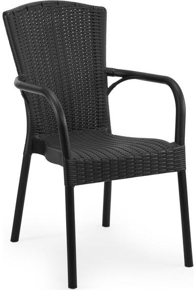 Bintaş Mobilya Siyah Dış Mekan Bahçe Masa Sandalyesi