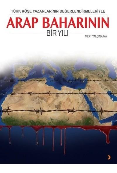 Türk Köşe Yazarlarının Değerlendirmeleriyle Arap Baharının Bir Yılı - Mert Yalçınkaya