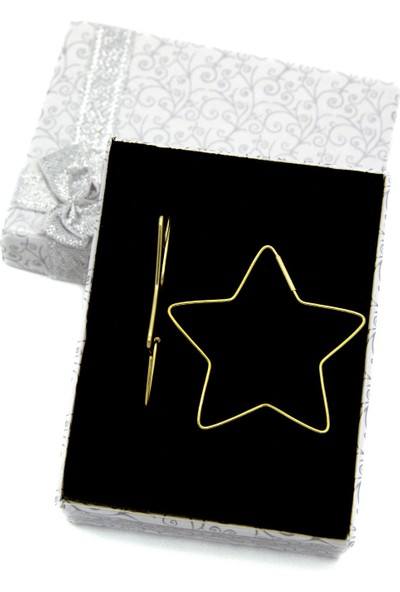 Estel Altın Kaplama Gümüş Yıldız Küpe