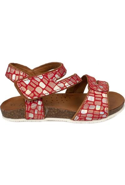 Piarmoni Msm Trend Sandals 2133 Cırtlı Kırmızı Çocuk Sandalet