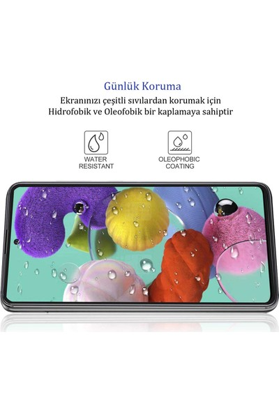 Samsung Galaxy A8 2018 Tam Kaplayan Ekran Koruyucu 5D Cam