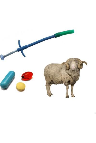 Yopigo Plastik Hap Yutturma Sondası Küçükbaş Koyun Keçi