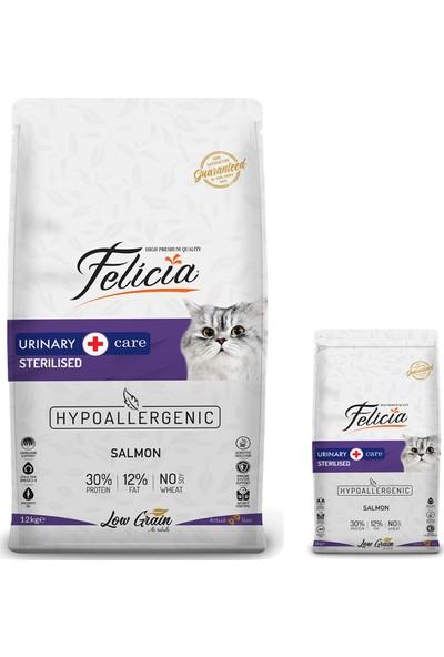 Felicia Somonlu Light&Sterilised Kedi Maması 12 kg + 2 kg