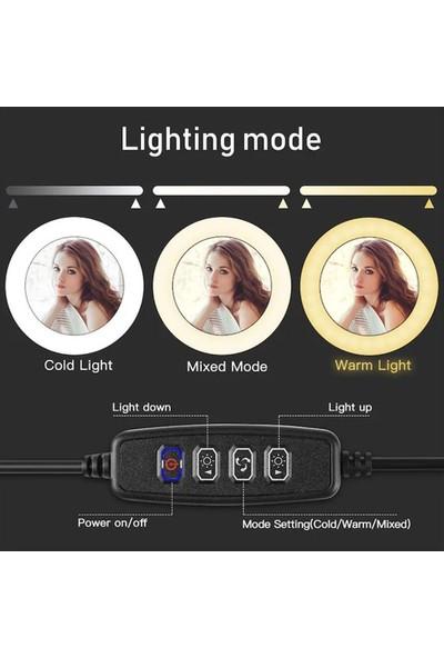 """Wlue Youtuber LED Işıklı Tripod Selfie Kuaför Makyaj Işığı Sürekli Ring Light 10"""" 2,1 M"""