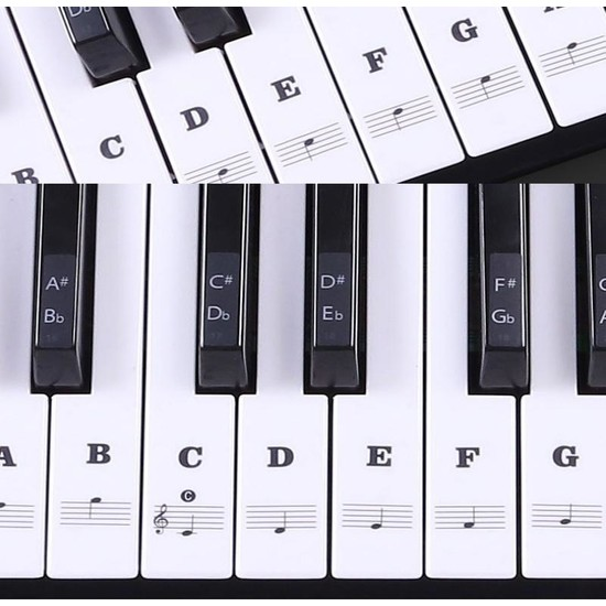 Happypotam Piyano Öğrenme Sticker ve Etiketleri Renkli ve Renksiz 88 Tuş