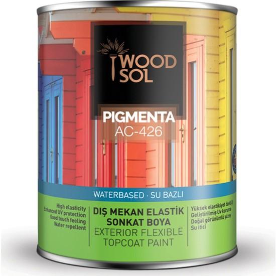 Woodsol Pıgmenta Elastik Sonkat Boya 0.75 Lt 1000 Bıanco