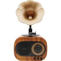 Teknonow B5 Nostaljik Mini Gramafon Radyo