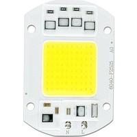 Foblight 50W 220V Projektör Cob LED Çip - Beyaz Işık