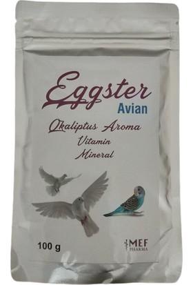 Avian Kuş Vitamin - Mineral 100 Gr.