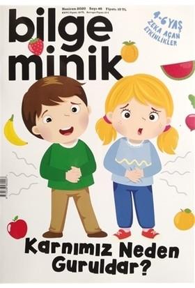 Bilge Minik Dergisi Sayı: 46 Haziran 2020
