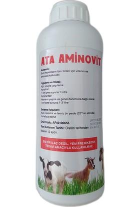 Atafen Ata Aminovit