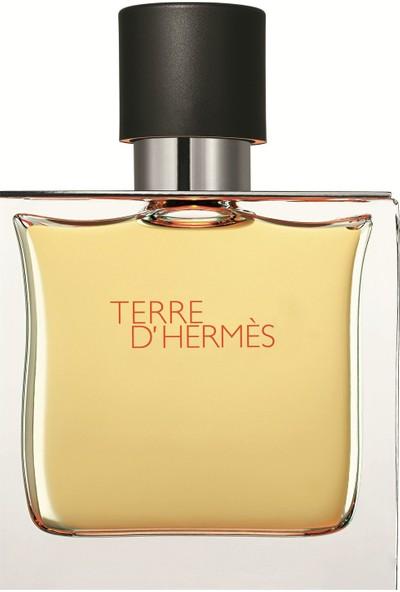 Hermes Terre D Erkek Parfüm Edt 100 ml