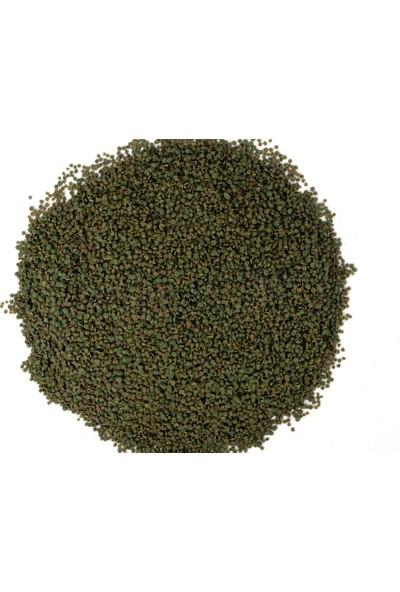 Amore Tropheus Veggie Chips Tanganyika Malawi Bitkisel Algae 250ML Spirulina Sarımsak Balık Yemi