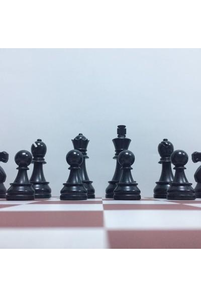 Dgt Profesyonel Satranç Takımı 86 mm