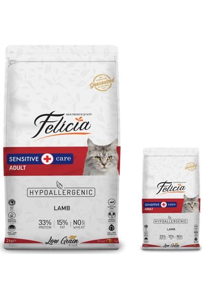 Felicia Kuzu Etli Yetişkin Hypoallergenic Kedi Maması 12+2 kg