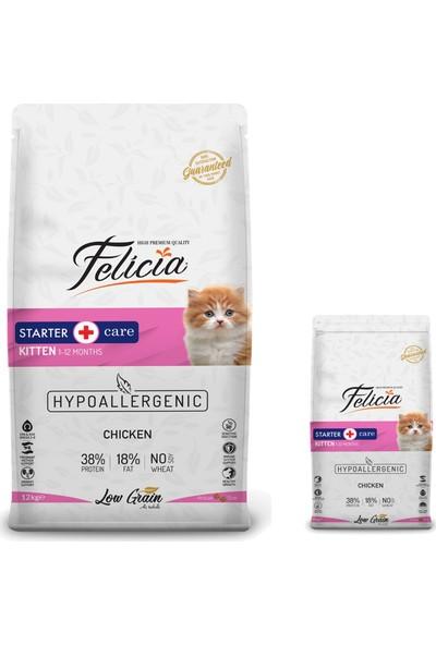 Felicia Kitten Tavuklu Yavru Kedi Maması 12 kg + 2 kg