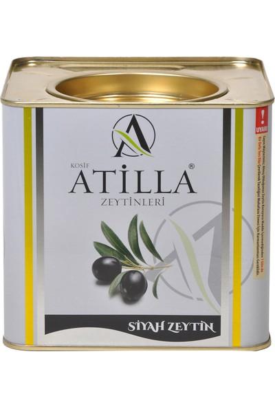 Atilla Zeytinleri 2,5 kg 231-260 Kalibre Süper Mega Siyah Zeytin