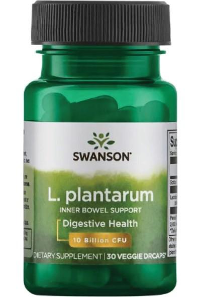 Swanson L. Plantarum Probiotic