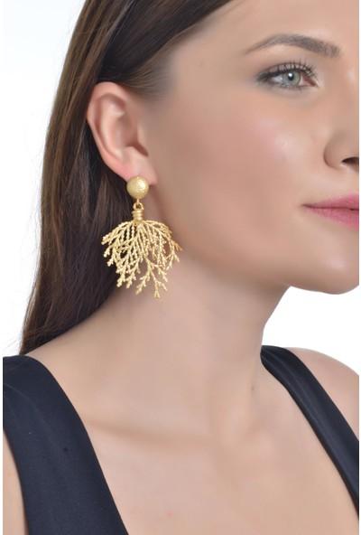 Labalaba Kadın Altın Renk Kaplama Yaprak Stılızesi Küpe