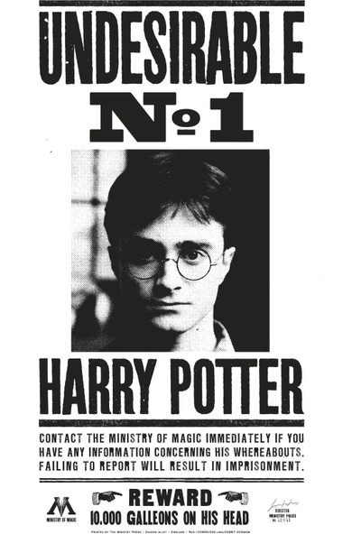 Undesirable No 1 Harry Potter Poster