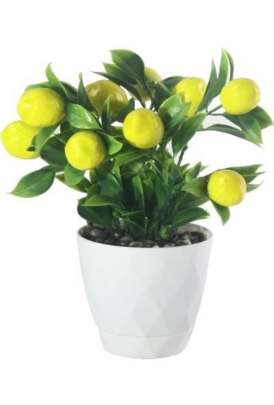 Nettenevime Yapay Çiçek Limon Ağacı Beyaz Saksıda ve Dekoratif Çakıl Taşlı
