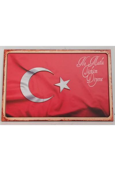 Mixperi Ne Mutlu Türküm Diyene Bayraklı Retro Tablo
