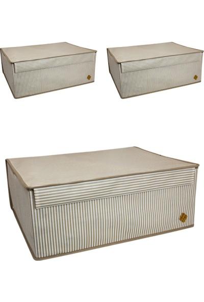ALAS 3 Adet Kapaklı Çok Amaçlı Hurç Kutu Baza 50 x 40 x 19 cm Kahverengi