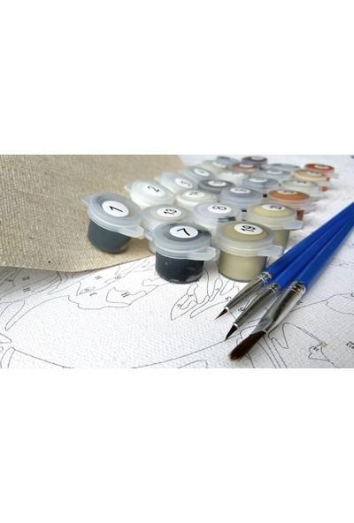 Sayılarla Boyama Tablo Seti Kanvas Fırça Boya Kayık 45 x 55 cm