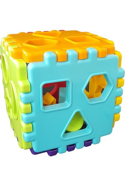 King Toys Fileli Eğitici Bultak Oyuncak