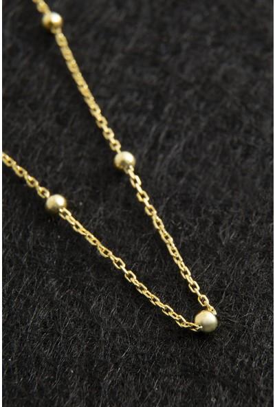 Elika Silver Top Zincirli Altın Kaplama 925 Ayar Gümüş Kolye