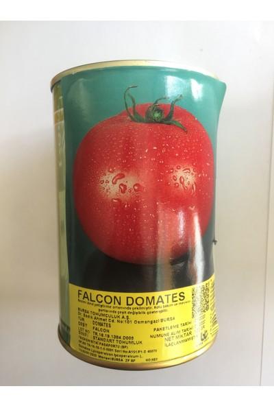 Agrobazaar Bursa Tohum Falcon İri Domates Tohumu 100 Gr