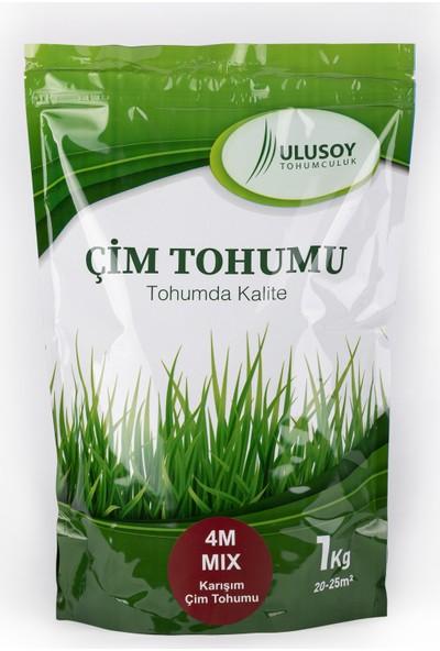 Ulusoy Tohumculuk 4M Mix Çim Tohumu Karışımı 1Kg