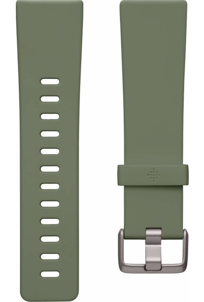 Fitbit Versa 2 Özel Sürüm Akıllı Saat (Yurt Dışından)