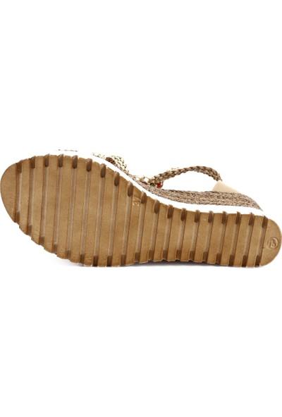 Dgn 3240-1 Kadın T-Strap Dolgu Topuk Sandalet 20Y