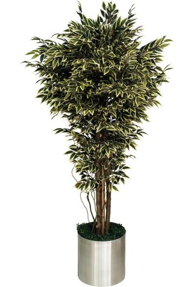 Nettenevime Yapay Ağaç Benjamin Galvaniz Saksılı Yeşil Beyaz Doğal Görünüm