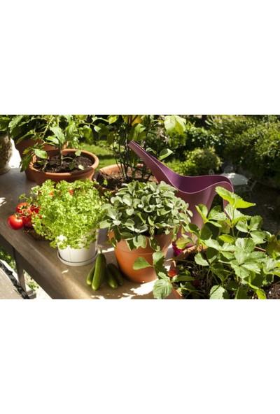 Gübretaş Yeşil Alanlar Süs Bitkileri Için Sıvı Gübresi 5 Lt