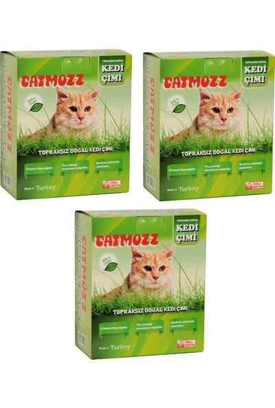 Catmozz Yavru ve Yetişkin Kediler Için Büyük Boy Organik Topraksız Kedi Çimi Seti 3 Adet